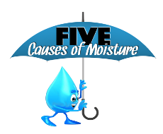 5 Causes of Moisture in Your Home
