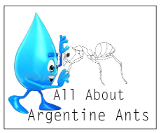 All About Argentine Ants