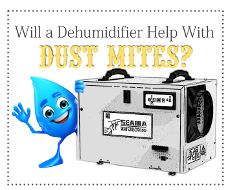Will a Dehumidifier Help with Dust Mites?