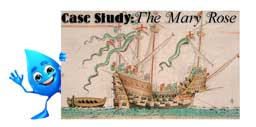 The Importance of Maintaining & Monitoring Humidity Case Study: The Mary Rose