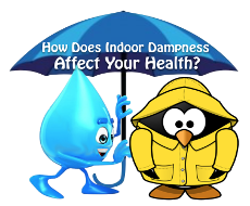 How Does Indoor Dampness Affect Your Health?