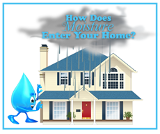 Moisture In Your Home