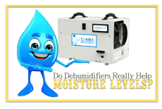 Do Dehumidifiers Really Help Moisture Levels?