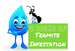 3 Signs of Termite Infestation